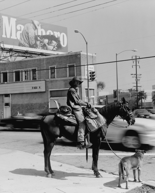 Cowboy on a journey traveling from Oregon to Montana along Rout 66, Santa Monica Blvd. and Doheny RD. in Beverly Hills, Spot News.