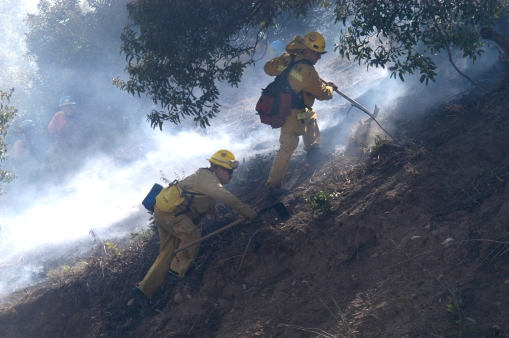 Beverly Hills Brush Fire - West Side Chronicle
